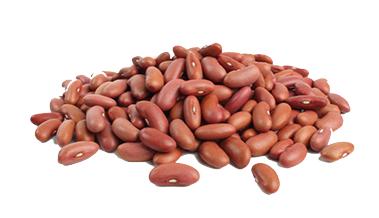 read beans